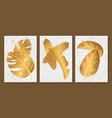 tropical golden leaves set for social media vector image vector image