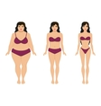 Woman slimming fat slim girl female weight loss vector image vector image