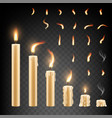 burning candle and flame set isolated vector image
