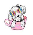 cute spaniel dog puppy vector image vector image