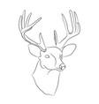 deer portrait lines vector image vector image