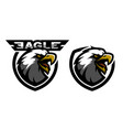 head of the eagle sport logo two versions vector image
