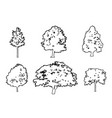 tree collection drawing engraving vector image