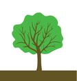 tree color vector image vector image