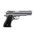 gun isolated vector image