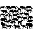 African wildlife silhouettes vector image