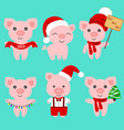 christmas pig christmas icon symbol of the new vector image vector image