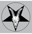 goat skull occult symbol vector image vector image