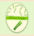 good asparagus vector image