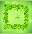 green background with leaf frame vector image vector image