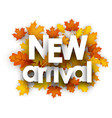 autumn new arrival card with leaves vector image vector image