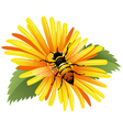 Bee on a yellow daisy vector | Price: 3 Credits (USD $3)