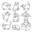 doodle sketch cats character set vector image