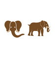 elephant icon design set bundle template isolated vector image
