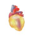 realistic human sick heart isolated on dark gray vector image