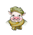 the portrait of a piglet in a round soft beret on vector image