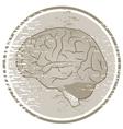 Vintage brain vector image