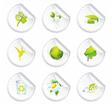 organic elements vector image