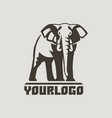 elephants logo sign vector image