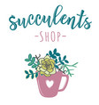 for store of succulents vector image vector image