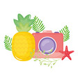 camera photographic with starfish shells vector image vector image
