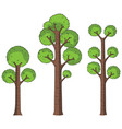 cartoon trees on white vector image vector image