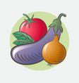 eggplant tomato onion leaves basil ripe vegetables vector image