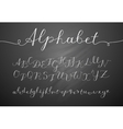 handwritten lettering alphabet vector image