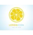 Yellow lemon grapefruit stylish icon Juicy fruit vector image