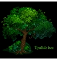 Green tree isolated on a black background vector image