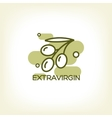 logo of olive branch vector image