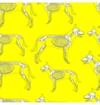 dog skeleton seamless pattern background vector image