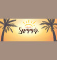 hello summer background banner tropical vector image