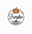 pumpkin vegetable logo round linear on background vector image