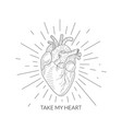 take my heart quote human heart anatomical sketch vector image