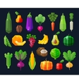 vegetables and fruits fresh food icons set vector image vector image