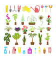 window gardening infographic elements vector image vector image