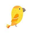 yellow cute exotic parrot with big head and small vector image