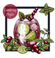 square framed card with cranberry mojito vector image
