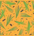 a plant acorus calamus vector image vector image