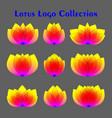 abstract bright lotus logos set colorful vector image