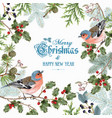 bird christmas big frame vector image