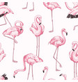 colorful seamless pattern with pink flamingo hand vector image