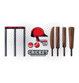 cricket equipment player vector image vector image