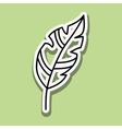 feather icon design vector image