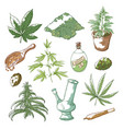 marijuana sketch set vector image vector image