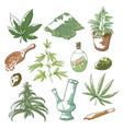 marijuana sketch set vector image