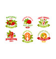 natural fresh food logo collection fresh high vector image vector image