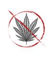 outline drawing leaf marijuana in grunge vector image vector image