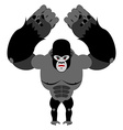 Angry gorilla on its hind legs Aggressive Monkey vector image vector image